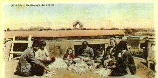 Sultan Abdülaziz Çukurovada Pamuk Tarımının Önünü Açtı